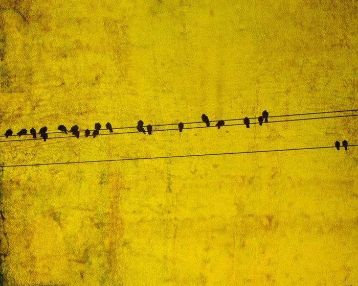 Bird On A Wire Bird Print Mustard Yellow Metallic Gold