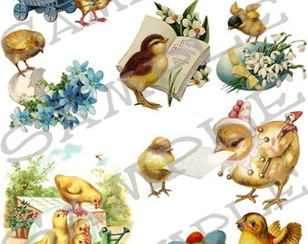 Baby Chicks Collage Sheet 1