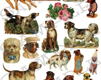 Niedliche Welpen und Hunde Collage Sheet 3pd
