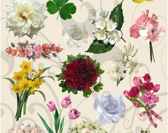 Collage Sheet More Flowers 67 Instant Download Jpeg Sheet