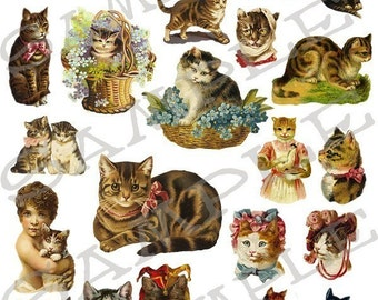Cats and Kittens Collage Sheet 5ck You will get a Jpeg and individual Png images