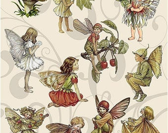 Fairy Children Collage Sheet 1fcc Jpeg Sheet and Individual Png Images