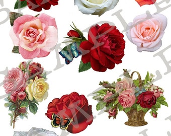 Blooming Roses Collage Sheet 1BR