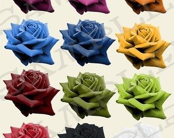 Colored Rose Blooms Collage Sheet 1CRB PNG Format Sheet