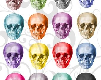 Rainbow Skulls Collage Sheet