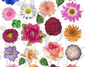 Garden Variety Flowers Collage Sheet 1gvc