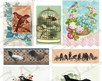 Vintage birds Collage Sheet 99a