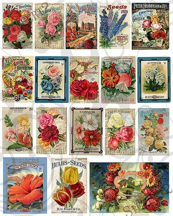 Flower Seed Packet Collage Sheet 11fspc