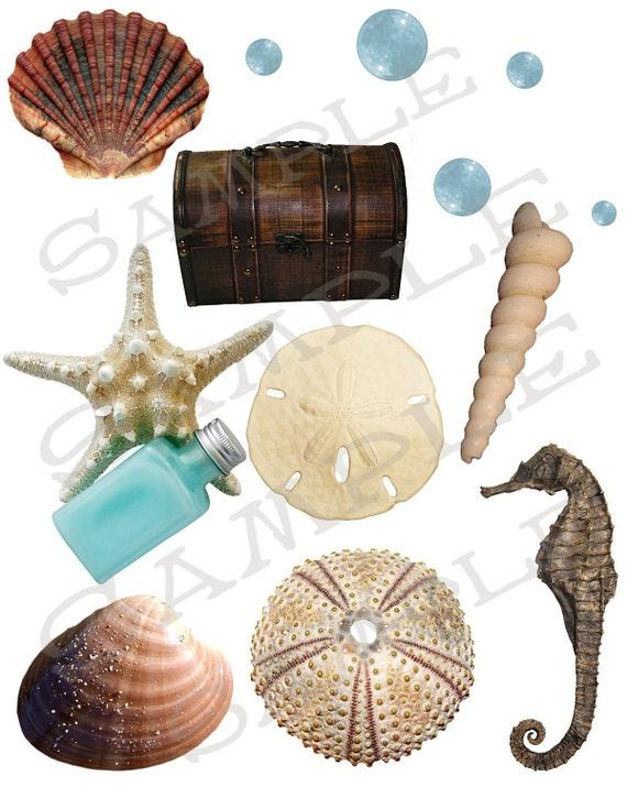 Seashell Collage Sheet