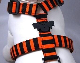 Dog Harness - Halloween Stripes
