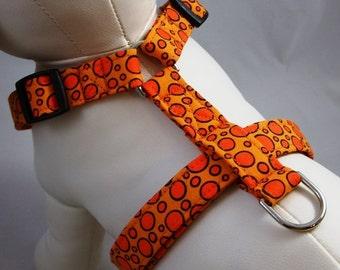 Dog Harness - Orange Soda Pop
