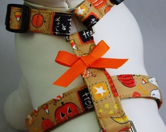 Dog Harness - Trick or Treat