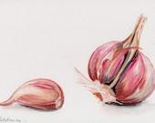 Fresh Garlic Cloves ORIGINAL watercolor painting by Redstreake
