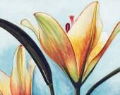 Biltmore Lilies flower ORIGINAL watercolor painting by Redstreake