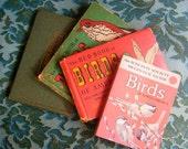 Vintage bird books