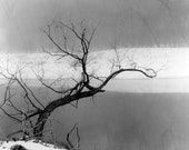 Robb Siverson January Fog, Silver Print, Red River 8x10