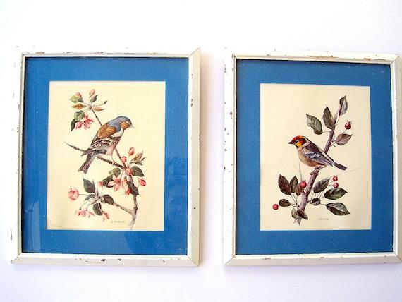Vintage Bird Picture Pair Shabby Chic Framed / Spring Decor