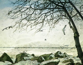 Winter photograph, Cleveland print, home decor, Fine Art Photograph