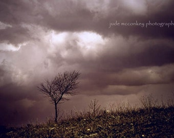 Storm photograph, tree photo, home decor, Fine Art Photograph