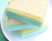 Salt Bar Soap - Cactus Barrel Scented - All Natural Glycerin - LAST ONE