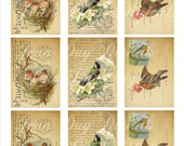 French Bird, Flower and Nest - Gift Tags - French Postcard - Collage Sheet - Instant Download Printable Tf010