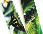 Butterflies. Set of 2 Laminated Photo Bookmarks. Great Gift Idea.