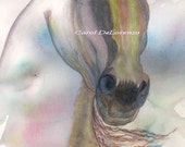 Watercolor Painting Horse Art, Horse Painting, Horse Watercolor, Horse Art Print, Arabian Horse Art Titled Rainbow Stallion
