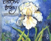Bloom today 8 x 10 mixed media print by artist June Pfaff Daley
