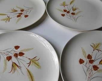 Vintage Taylor Smith and Taylor Autumn Harvest Dinner Plates Set of Four  - Mid Century