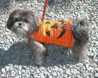 Autumn sweater WEE WITTLE Jack O'LANTERN - Hat available -2 to 20 lb dogs