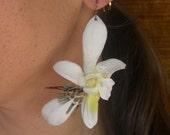 Ho ohau oli -Feather Flower Earrings