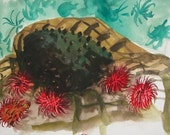 Still life with Guanabana and Rambutan