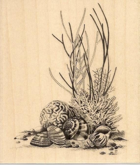 inkadinkado sealife coral rubber stamp sketches seashells. Black Bedroom Furniture Sets. Home Design Ideas