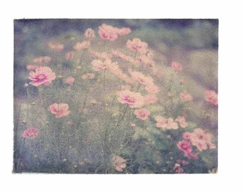 Photography Flowers Pink Green Watercolor Vintage Art 8x10 Print