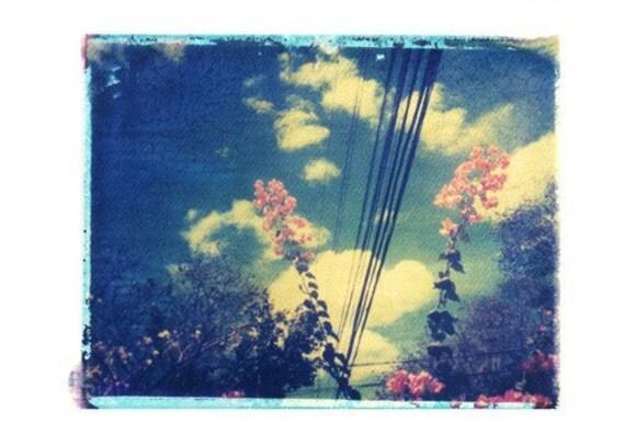 Nature Polaroid Photograph Tropical Flowers Clouds Blue Pink Vintage Art 8x10 Print