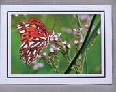 Gulf Fritillary--5x7 Notecard