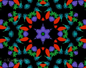 Blue Green Red Turquoise Leaf Kaleidoscope (k16)--Digitally Altered Fine Art Photograph  8x10