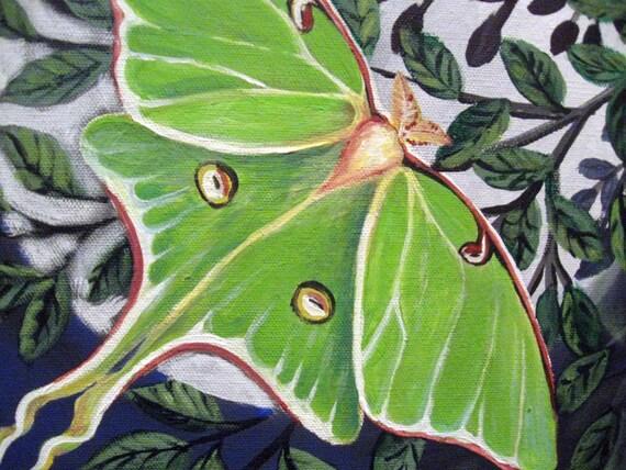LUNA  12x12 inch canvas