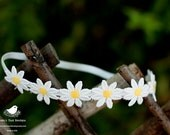 Multiple Daisy Flower Headband-Newborn to adult sizes-Photography Prop/Spring/Summer-Made to oder
