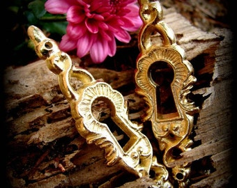 two decorative keyhole escutcheon plate embellishments