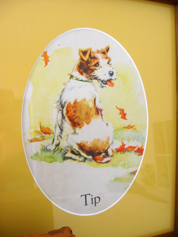 Framed Print of Tip the Little Wiire Fox Terrier with Shadowbox and Dog Figure