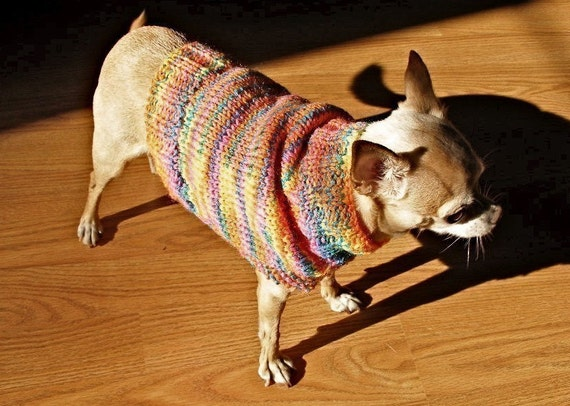 Immediate Download - PDF Knitting Pattern for The Fiesta Dog Sweater