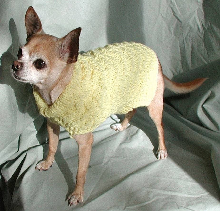 Knitting pattern dog sweater browse patterns - Knitting for dogs sweaters ...