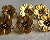 Gold Plated Daisy Earring Posts (6)