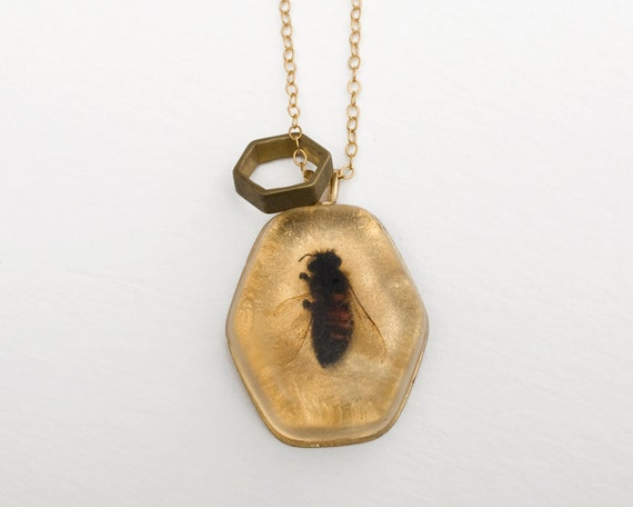 Real Bee Necklace - Hexagon Jewelry - Taxidermy - Natural History