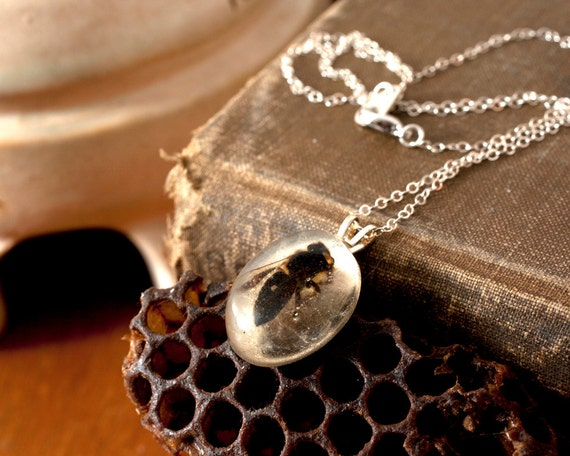 Silver Colony Collapse Real Bee Necklace, Small Oval