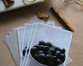 Blueberry Note Card Set