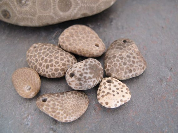 Genuine drilled favosite fossil pendants and charms for jewelry by BeachStoneSoup