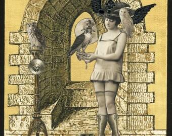 Falconry Print