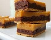 Chocolate Butterscotch Bars